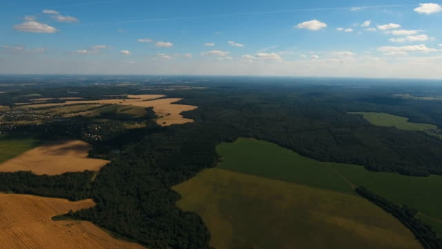Aerial View.Landscape of the forest, field, sky video