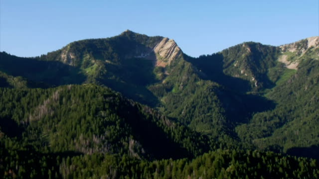 aerial zoom shot of green forest and mountains video