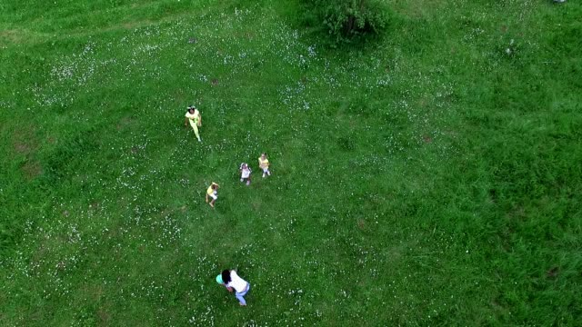 Aero, video shooting from above. Children together with their mothers are playing with the ball on the chamomile meadow, near the forest. They have fun. Summer, outdoors, in the forest. Vacation with children video