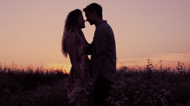 Affectionate couple kissing in the field at sunset video