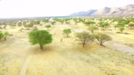 Africa desert video