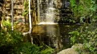 Africa Jungle Waterfall video