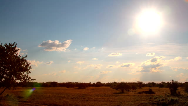 Africa Sunset Time Lapse video