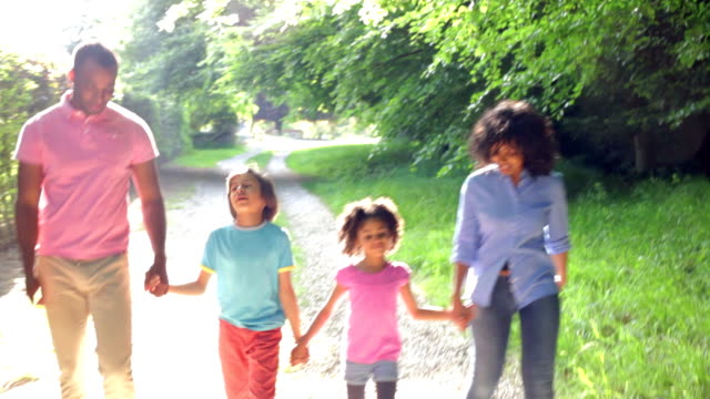 African American Family Walking In Countryside video