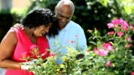African American happy couple outdoors working in garden video