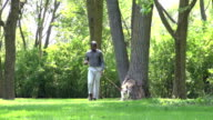 African American man walking his dog at the park video