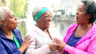 African American women, best friends talking, laughing video