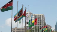 African Flags in Nairobi video