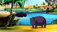 African Hippopotamus  UHD video