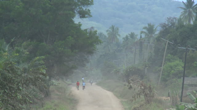 african jungle road video
