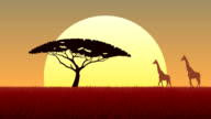 African Landscape Sunset video