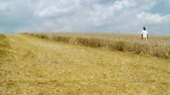 HD: African Man In A Wheat Field video