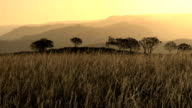 African savannah and mountains sunset video