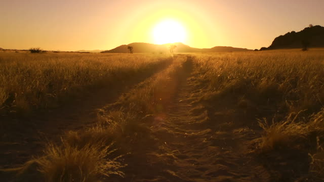 African Sunset video