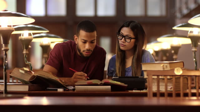 DS African-American and Asian student studying in library video