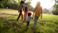 African-american family taking a walk in a beautiful park video
