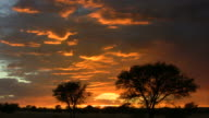 afrik_Wolkenhimmel1 video