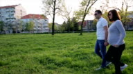 afternoon walk video