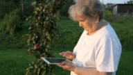 Aged woman 80s holding a digital tablet outdoors video