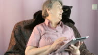 Aged woman looks at the black cat indoors video