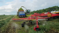 Agricultural machinery to harvest. Harvester collects grass in a heap, the other machines will ship in the grass truck video