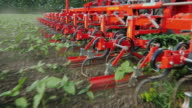 Agricultural mechanism cuts the weeds. The camera moves along mechanism video