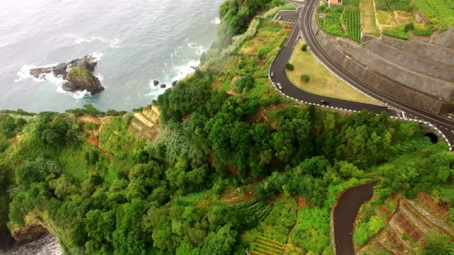 Agriculture and landscapes in Madeira Island. View to the ocean, terraced and cultivated land. video