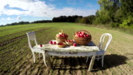 Agriculture harvest concept. Apple baskets on old  table on autumn farm field and clouds. Timelapse video