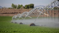 agriculture - industrial irrigation system video