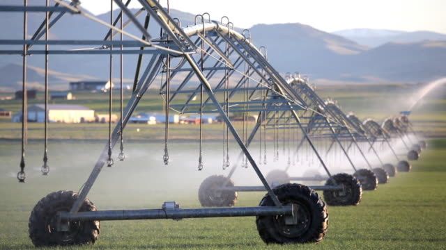 agriculture irrigation video