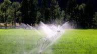 Agriculture Irrigation Wheel Line Sprinkler Okanagan Valley Similkameen video