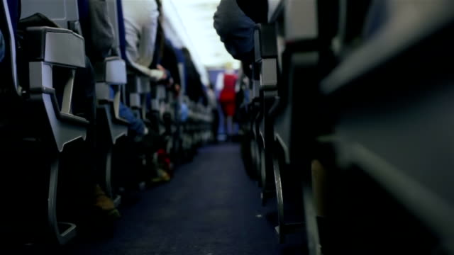 Airplane Travel.Stewardess and Passengers during a flight video