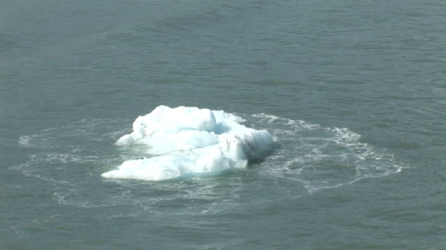 Alaska Chunk of Ice in the sea video