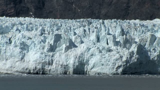 Alaska Glacier Bay video