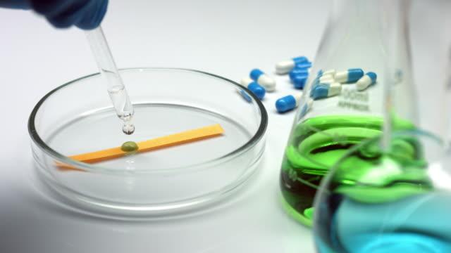 Alkaline liquid on a test strip in petri dish video