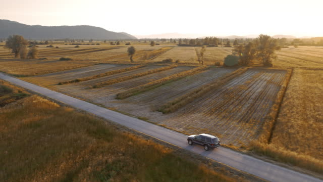 AERIAL All terrain vehicle riding along countryside road in sunset video