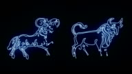 All the Zodiac Sign Revealed in Blue Glowing Lines video