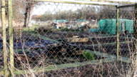 Allotment Scene Through Fence Gardening Wide Shot - Rural Village / Town Scenes video