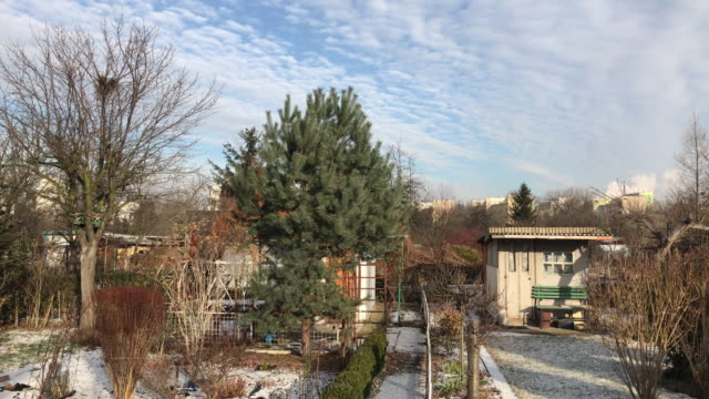 Allotments in snowy winter video