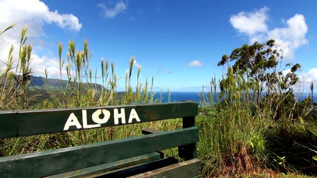 Aloha Bench In Hawaii video