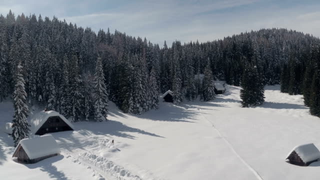 AERIAL: Alpine houses in dense spruce forest on snowy white hill slope in winter video