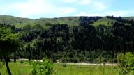 alpine meadow, mountains, Ili River Valley video