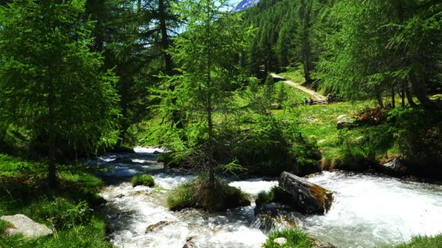 Alpine Mountain Valley In Springtime video