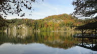Alpsee in Fall video