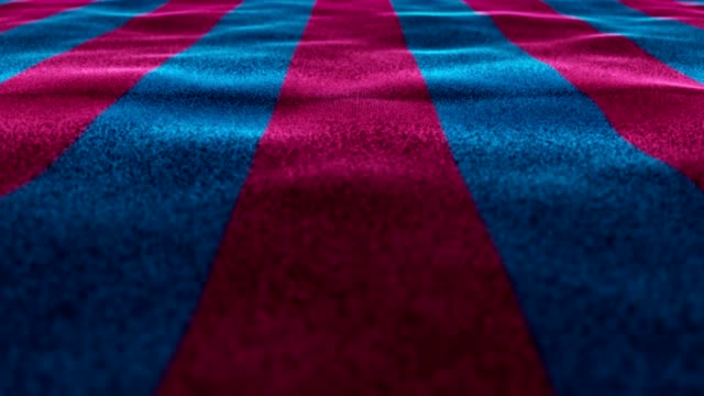 Amaranth and Blue Flag, Textile Carpet Background, Still Camera, Loop video
