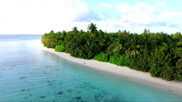AERIAL: Amazing sandy beach and turquoise water in exotic Maldives video