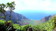 Amazing views over stunning Na Pali coast along Kalalau trail in Kauai, Hawaii video