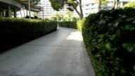 Amazing Walkway video