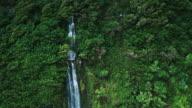 Amazing Waterfall along Tropical Rain Forest Coastline video