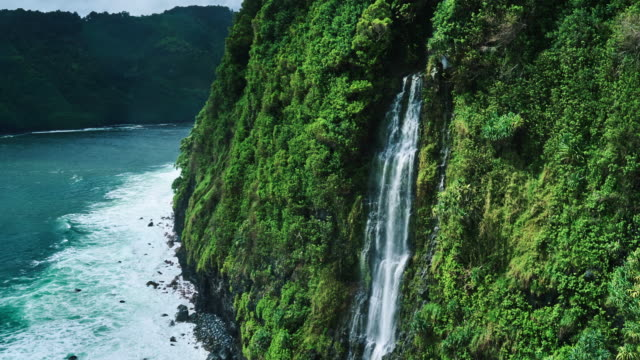 Amazing Waterfall along Tropical Rain Forest Coastline video